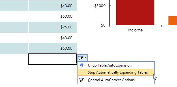 Einfacher Monats Budget-Vorlage für Excel 2013