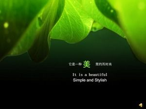 Beautiful green nature PPT background picture