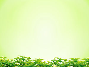 Green osmanthus background simple PPT background picture