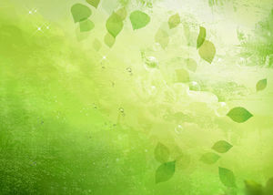 Green transparent leaves beautiful PPT background picture