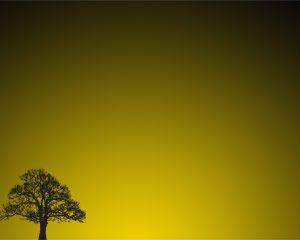 Tree Sunset Powerpoint Template