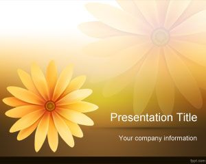 Daisy Flower PowerPoint Template