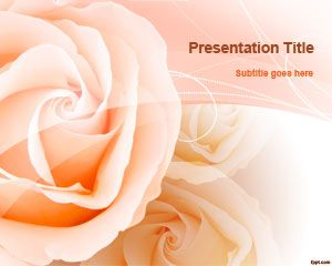 Peach Roses PowerPoint Template