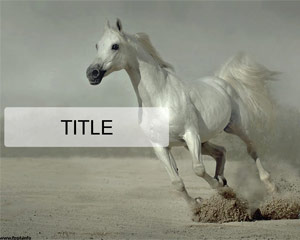 Esecuzione Template Horse Powerpoint Bianco