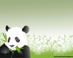 Panda Powerpoint Template