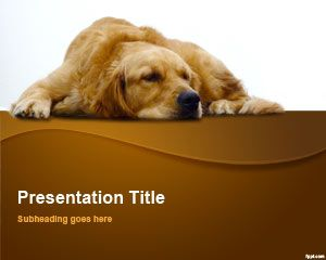 Шаблон Golden Retriever PowerPoint