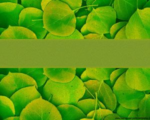 Green Nature Powerpoint