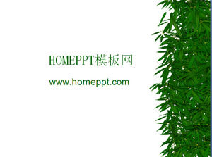 Bamboo bamboo leaves PPT background picture download