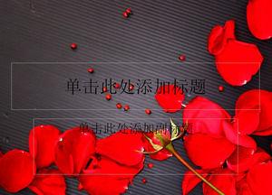Beautiful rose petals black background ppt template