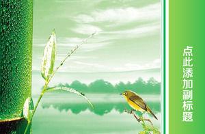 鳥や竹ライトグリーンリフレッシュpptのワイドスクリーンテンプレート