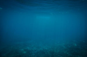 Blue underwater world simple PPT background picture
