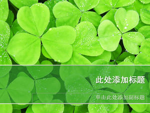 Clover HD background picture PPT nature template