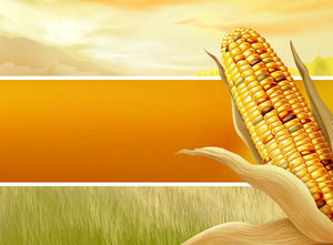 Free Agriculture Powerpoint Templates