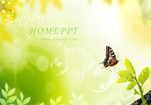 Elegant and beautiful butterfly PPT template download