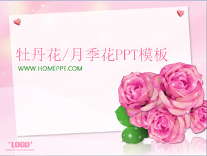 Elegant Peony Rose Rose Background PowerPoint Template Download;