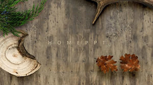 Forest flora and fauna theme atmosphere big picture simple ppt template