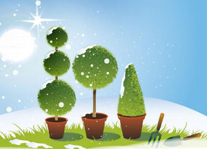 Garden Drawing during Winter season powerpoint template