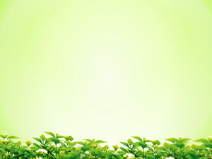 Green osmanthus background simple PPT background image