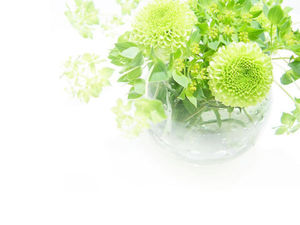 Green vase plant PPT background picture