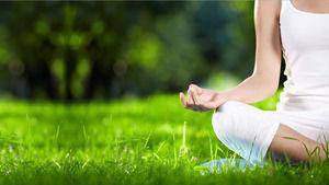Green Yoga PPT background image