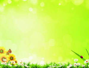Halo flowers butterfly green grass PPT background picture