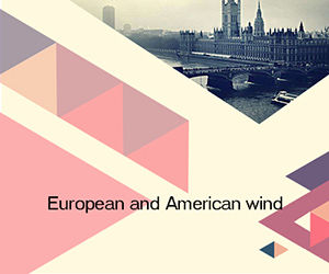 European and American wind ppt