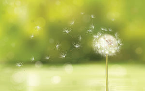 IOS style green spot background dandelion PPT background image