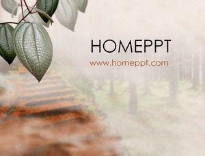 Leaf background PPT template download