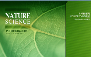 Life green green plant PowerPoint template