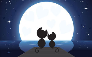 Moonlight under the two kittens PPT background picture