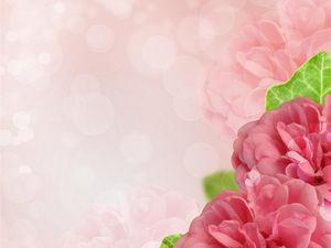 Pink flower PPT background image