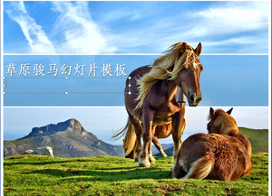 Prairie on the horse PPT template download grassland on the horse PPT template download