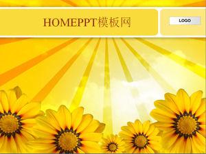 Sunflower background slide template download