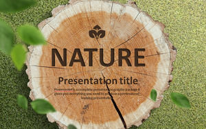 Tree Rings Pile Background PPT Templates Free Download