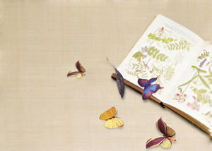 Two pictures of PPT background with elegant butterfly background