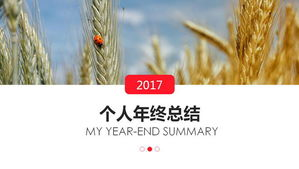 Wheat background year end summary PPT template download